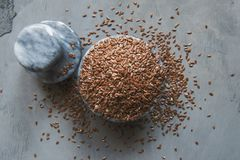 Все семена гибкого трубопровода Стоковая Фотография