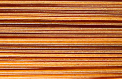 Все спагетти пшеницы Стоковая Фотография RF