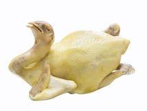 Все тело цыпленка Boiled Стоковая Фотография