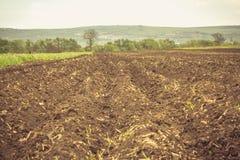 Вспаханная земля в лете Стоковое Изображение