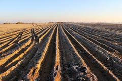 вспаханная земля пахотноспособной земли предпосылки хорошая Стоковое Фото