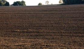 вспаханная почва сельскохозяйственне угодье Стоковое фото RF