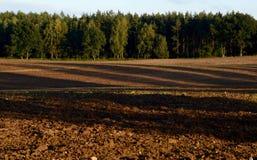 вспаханная почва сельскохозяйственне угодье Стоковые Фото