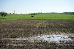 Вспаханное затопленное поле Стоковые Фотографии RF