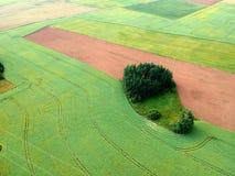 Вспаханное лето и поля рапса, вид с воздуха Стоковые Фотографии RF