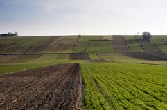 Вспаханное поле - земледелие в Польше Стоковое Изображение RF