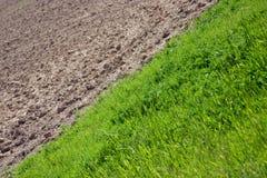 вспаханное поле Стоковые Фото