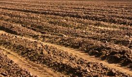 Вспаханное поле - ландшафт фермы страны Стоковое Изображение