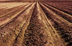 Вспаханное поле - ландшафт фермы страны Стоковая Фотография