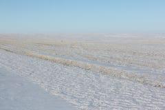 Вспаханное поле в снеге весной Стоковые Изображения