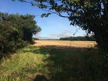Вспаханное поле майной страны Стоковое Фото