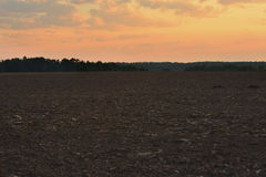 Вспаханное поле на зоре Стоковое фото RF