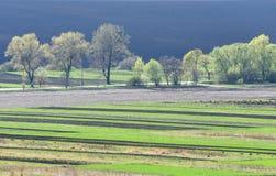Вспаханное поле, обрабатываемая земля на весне, Стоковое Изображение RF
