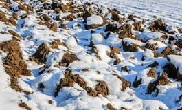 Вспаханное поле с тонким слоем снега Стоковое фото RF