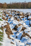 Вспаханное поле с тонким слоем снега Стоковое Изображение