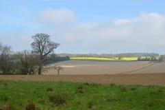 Вспаханное поле урожая в сельской Англии Стоковые Фотографии RF