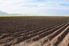Вспаханное поле Стоковое фото RF