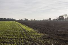 Вспаханное поле Стоковое Изображение