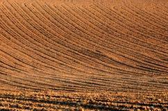 Вспаханное поле Стоковое Изображение RF