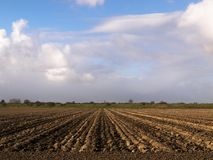 Вспаханные поле и небо Стоковое Изображение