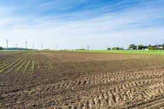 Вспаханные поля в Австрии стоковое изображение rf