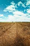 Вспаханные furrows поля картошки Стоковые Изображения RF