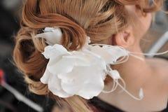 вспомогательное оборудование bridal Стоковые Фото