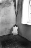 Вспугнутая женщина стоковые фотографии rf