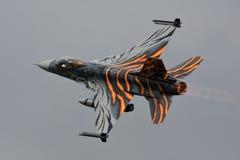 Встреча тигра F-16 стоковое изображение rf