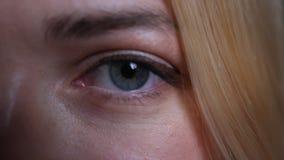 Всход стороны крупного плана половинный молодого милого белокурого кавказца женского с голубыми глазами смотря прямо на камере акции видеоматериалы