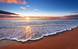 Всход в утре Стоковые Фото