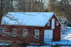 Всход зимы стоковое фото