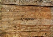 всходит на борт старой древесины Стоковые Изображения RF