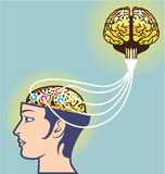 Вторым соединенный мозгом мозг иллюстрации дополнительный Стоковая Фотография RF