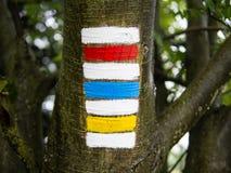 Втройне пеший знак на стволе дерева, типичный чехословакский туризм Стоковое Фото
