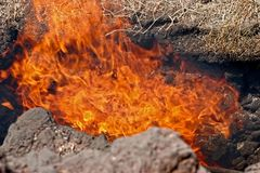 Вулканическая деятельность в национальном парке Timanfaya Стоковое Фото