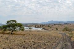 Вулканические ландшафты на озере Magadi, Кении стоковые фото