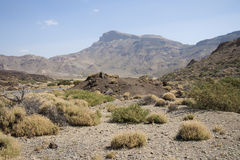 Вулканический ландшафт на Tenerife Стоковые Фотографии RF