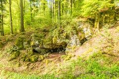 Вулканическое Eifel на Roth, Gerolstein Германия Стоковое Изображение RF