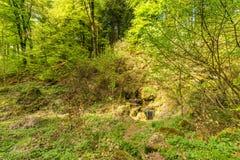 Вулканическое Eifel на Roth, Gerolstein Германия Стоковые Фотографии RF