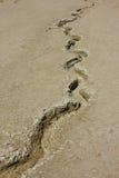 вулканы грязи Стоковая Фотография RF