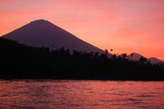 Вулканы дерева на заходе солнца с видом на море в Бали стоковые изображения rf