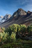 Вулкан и montain стоковые фото