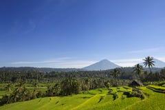 Вулкан на восходе солнца, остров Agung Бали в Индонезии стоковое фото