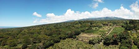 Вулкан склоняет Гаваи Стоковые Изображения RF