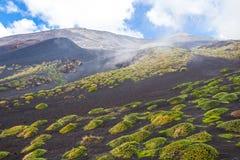 Вулкан Этна, Сицилия, Италия Стоковая Фотография RF