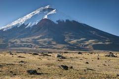 вулкан cotopaxi эквадора Стоковые Изображения RF