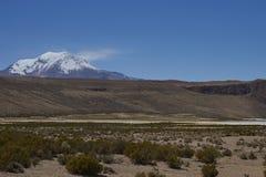 Вулкан Guallatiri в национальном парке Lauca, Чили стоковые изображения