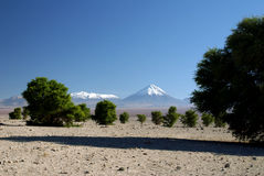 вулкан licancabur andes Стоковые Изображения RF