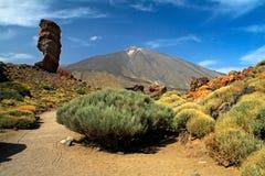 вулкан tenerife teide стоковая фотография